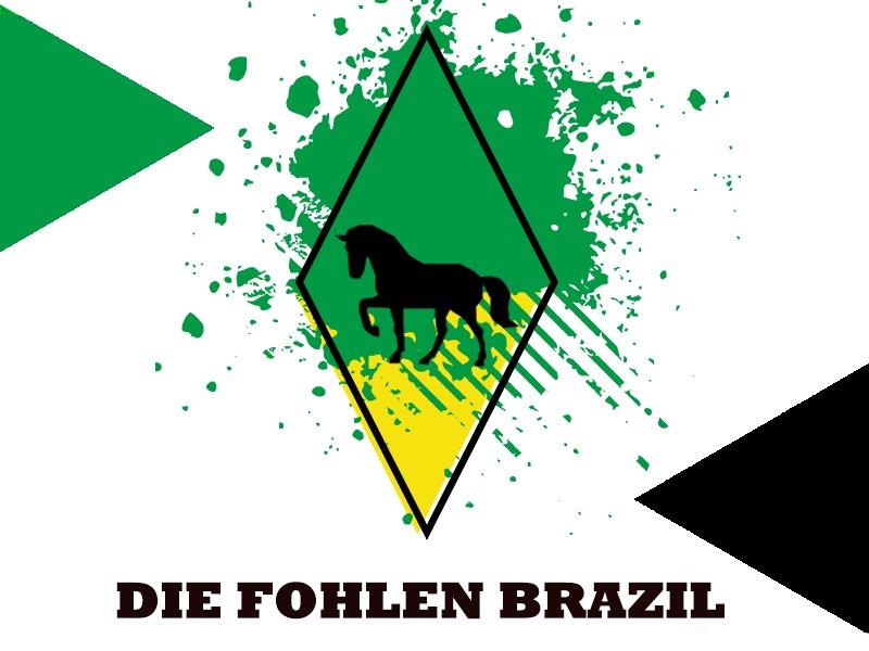 Gladbach Brasil